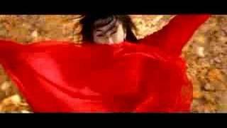 Hero (2002) Video