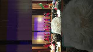 Ps 95q Performance In District 29 Show