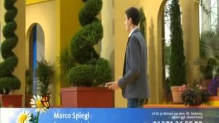 Marco Spiegl-Sommerwind (Immer wieder Sonntags) 03.08.14