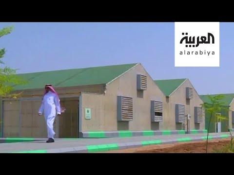 العرب اليوم - شاهد: مشروع جديد للزراعة باستخدام مياه البحر في جدة