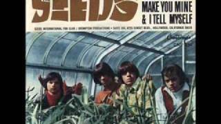 The Seeds - Can't Seem to Make You Mine - Lynx Bullet Advert Song