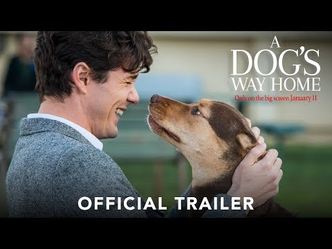 Movie Trailer: A Dog's Way Home (0)