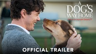 Trailer of A Dog's Way Home (2019)