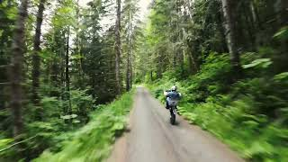 FPV Freestyle Chases Motorcycle through woods