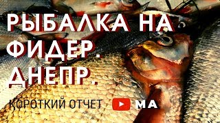 Отчеты рыбалка в ровно