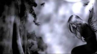 Toše Proeski - Tajno Moja (English Lyrics)