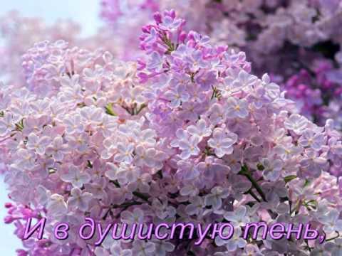 Сергей Рахманинов - Сирень