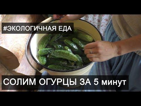 Как засолить огурцы за 5 минут