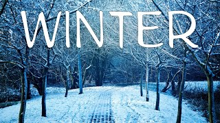 Charming Winter - Smooth Instrumental JAZZ Music for Soul