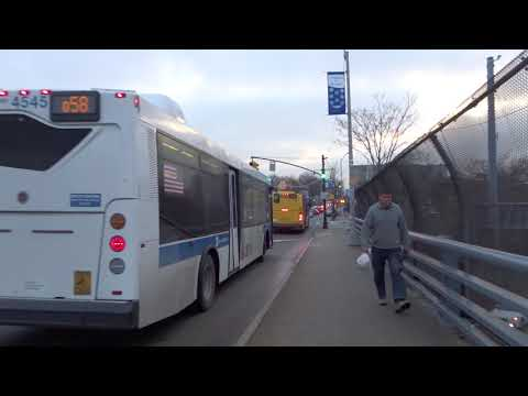 Q58 Bus Route New York Q58 Route Time Schedules Stops Maps Ltd ... Q Bus Route Map on