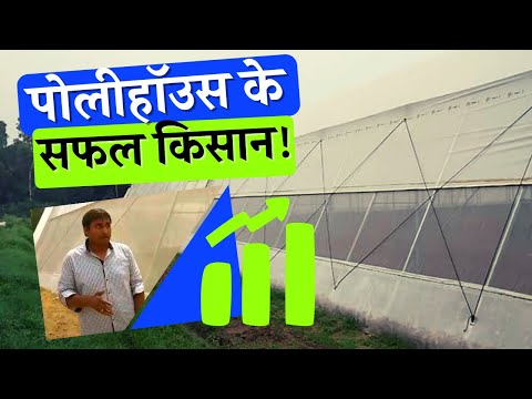 Agriculture Polyhouse