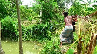 Net Fishing | Traditional cast net fishing in village | Fishing with a cast net (Part-61)