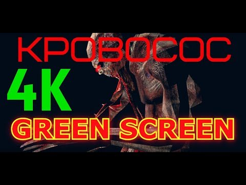 "ФУТАЖ - ""GREEN SCREEN"" RUN FORWARD - ""КРОВОСОС"" (С.Т.А.Л.К.Е.Р.)"