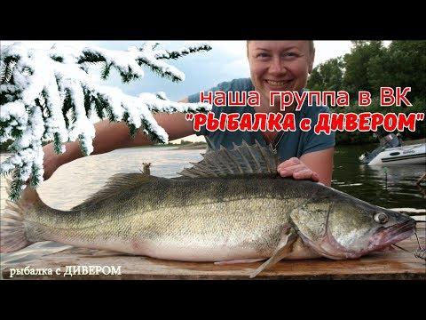 ПОДАРКИ ДЛЯ РЫБАКА, что же можно подарить рыбаку в подарок, ЧТО ПОДАРИТЬ ПАПЕ ? ПАРНЮ  БРАТУ МУЖУ