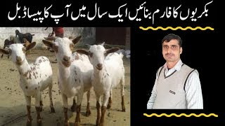 Hindi Goat Farming Urdu - My Own Email