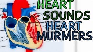 Heart - Murmurs