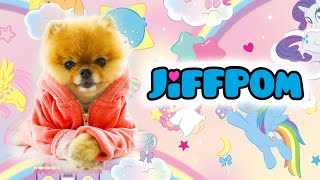 New jiffpom @jiffpom TikTok Compilation