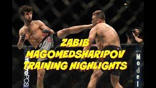 UFC FIGHTER Zabit Magomedsharipov MMA training highlights Забит Магомедшарипов