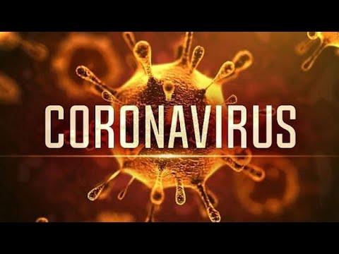 Phòng tránh viêm phổi cấp do chủng mới của viruscorona (nCoV 2019)