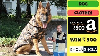 Why Dog Clothes? - Benifit Of Dog Clothes In Winter Season - Bhola Shola