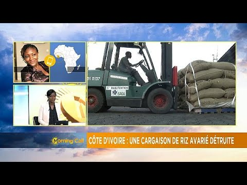 Cote d'Ivoire destroys dangerous rice [The Morning Call]