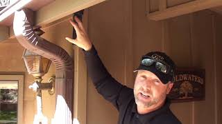 Bat Exlcusion: How to Get Bats Out of Your House