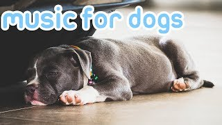 Dog Music! Deep Sleep Songs for Dogs to Relax! NEW 2019!