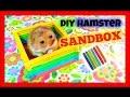 DIY Hamster Toy | Popsicle Sticks