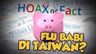 Hoax or Fact: saat Dunia Dihebohkan Virus Corona, Muncul Lagi Penyakit Flu Babi di Taiwan?