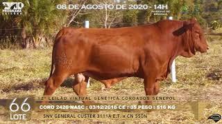 Coro 2426 b4 fiv