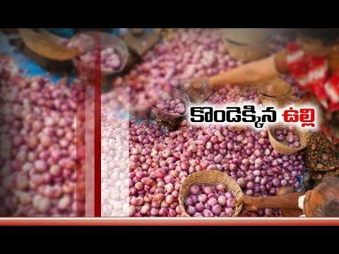 Onion Price Increases 201% | in Last One Month