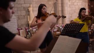 Nous vous présentons la nouvelle Vidéo de la Pellegrina