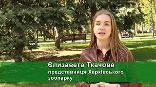 До парку Горького переїхали птахи із Харківського зоопарку