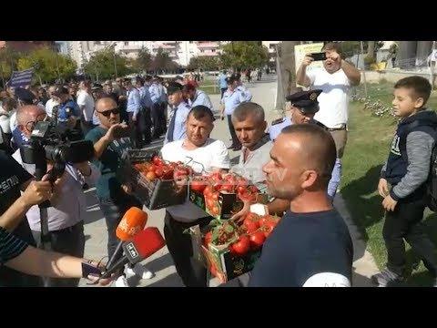 Report TV - Fermerët e Lushnjes në protestë: Qeveria të plotësojë kërkesat tona