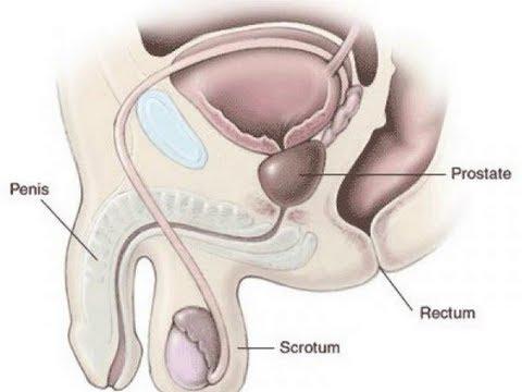 Therapie bei Osteochondrose der Halswirbelsäule Technik üben