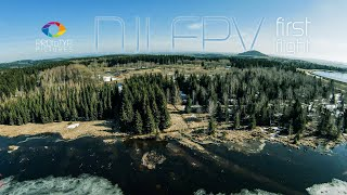 PROtoTYP Pictures - DJI FPV First Flight | 4k | cinematic | freestyle