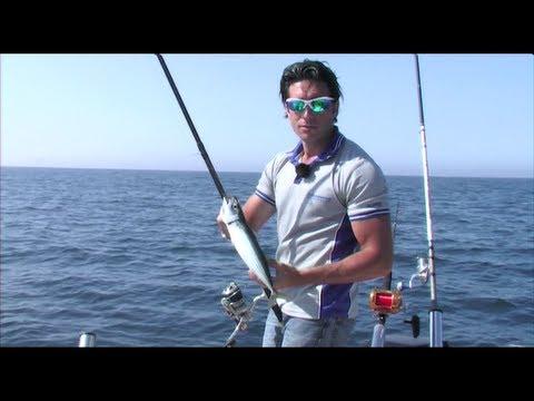 Guardare il video su pesca di un crucian