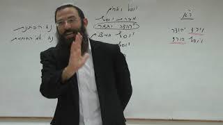 מדוע יוסף לא נבחר למלך הרי הוא לא חטא? לימוד מדרש וישב 31. הרב אריאל אלקובי שליט''א.
