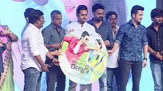 Courier Boy Kalyan Audio Launch