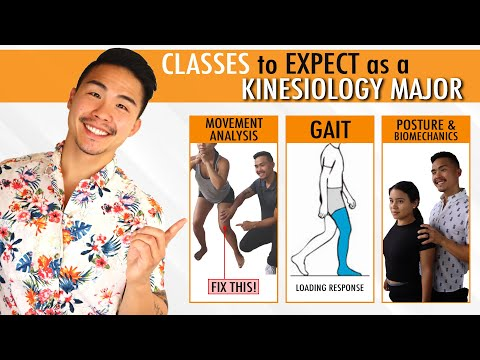 What are Kinesiology Classes like?