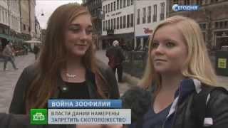 """Диктор угорает НТВ """"Сегодня"""" 14/10/2014. Смотреть до конца."""