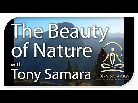 Celebrate the beauty of nature with Tony Samara
