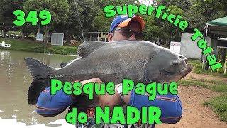 Programa Fishingtur na TV 349 - Pesque Pague do Nadir