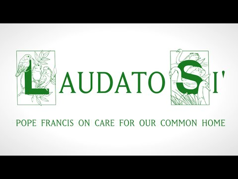an overview of pope francis encyclical letter on the environment Encyclical pope francis: » places his vision in continuity with his papal predecessors (§§3-6) and in harmony with non- catholic religions and secular thinkers (§§7-9) » shows how laudato si' is animated by the spirit of st francis of assisi, patron saint of those who promote ecology, and emphasizes.