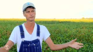 Farmers Talk About The Benefits Of Bio Forge®