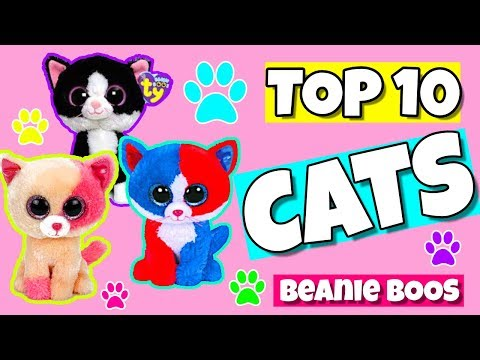 Top 10 beanie boo cats