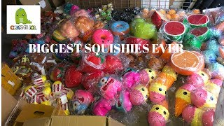 BIGGEST SQUISHY SUPPLIER PACKAGE WITH THE BIGGEST SQUISHIES