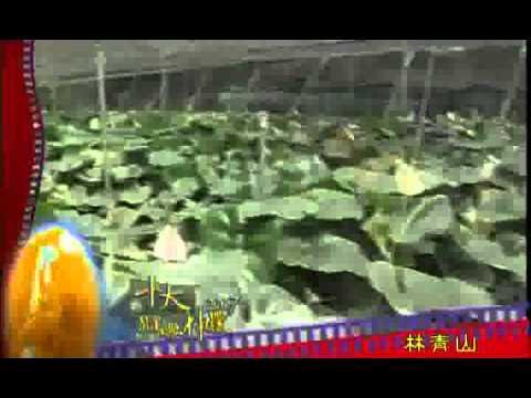 2007十大經典神農事蹟