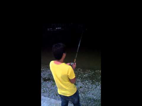 rawang exotic fishing pond(my first time there)