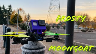 Frosty Morning Rip / FPV Freestyle / Ummagawd MoonGoat